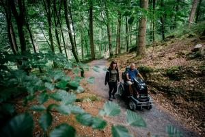 Explore Coed y Brenin with Countryside Mobility