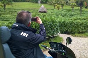 Enjoy the beautiful gardens of National Trust Glendurgan with Countryside Mobility