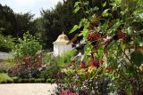 Mount Vernon Garden at American Museum & Gardens