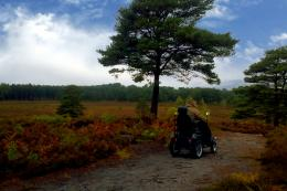 Avon Heath Country Park is one of a handful of locations offering Tramper hire for local exercise