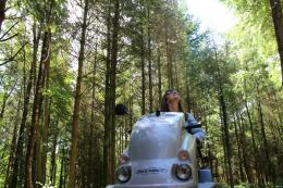 Haldon Forest is one of the locations to offer Tramper hire.